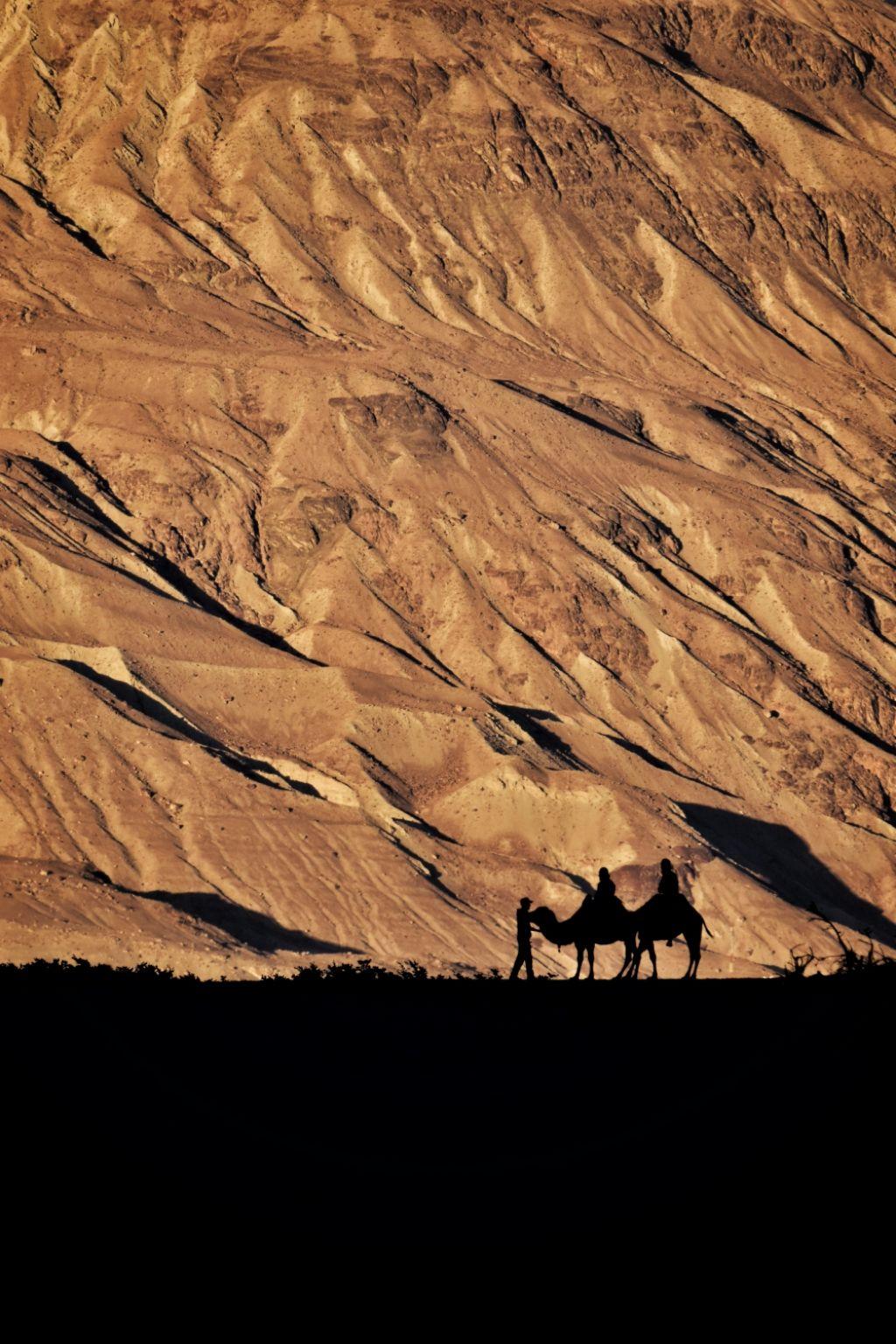 Photo of Nubra Valley By Arun Thakur