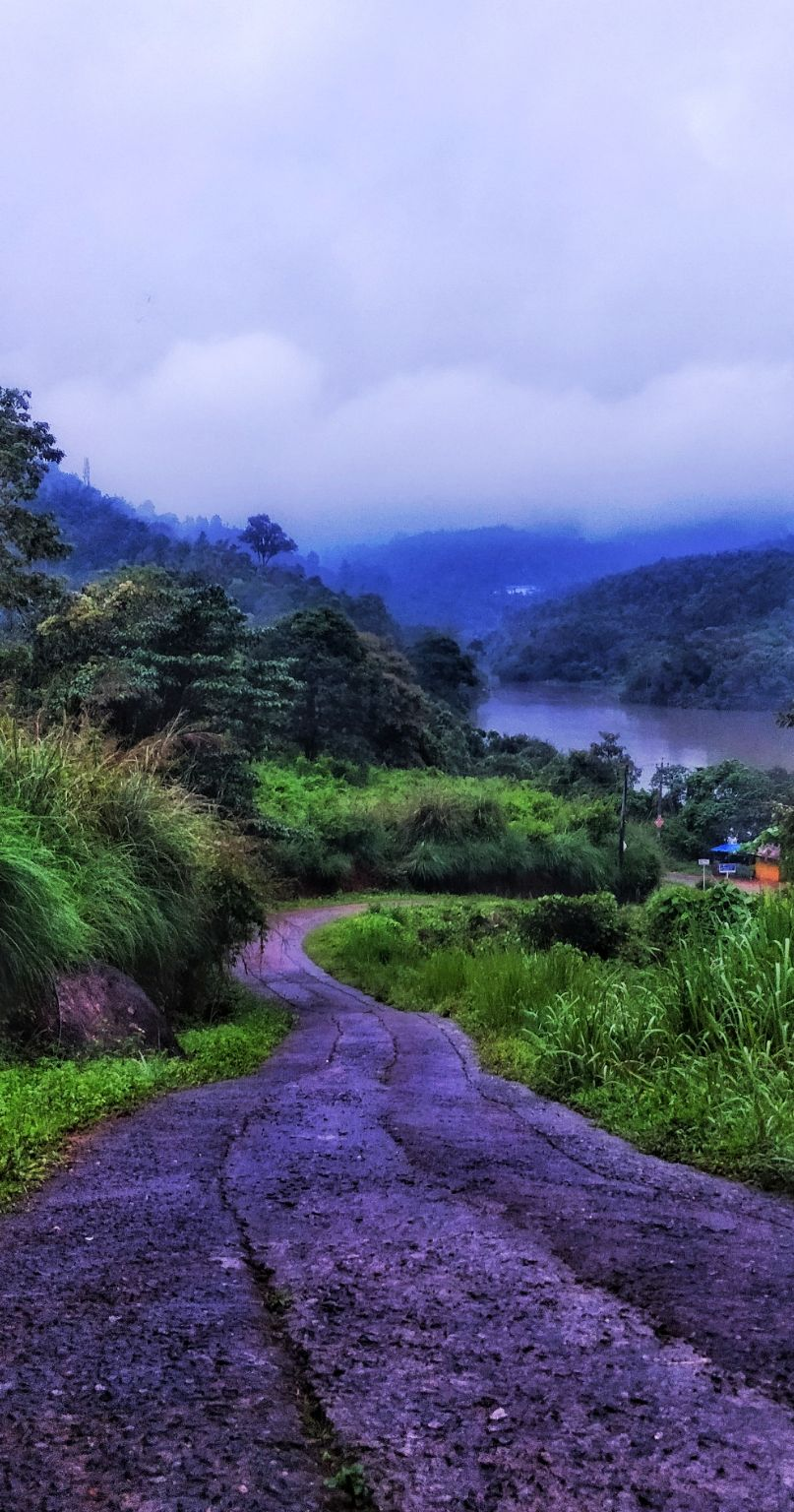 Photo of Munnar By Mayank Goyal