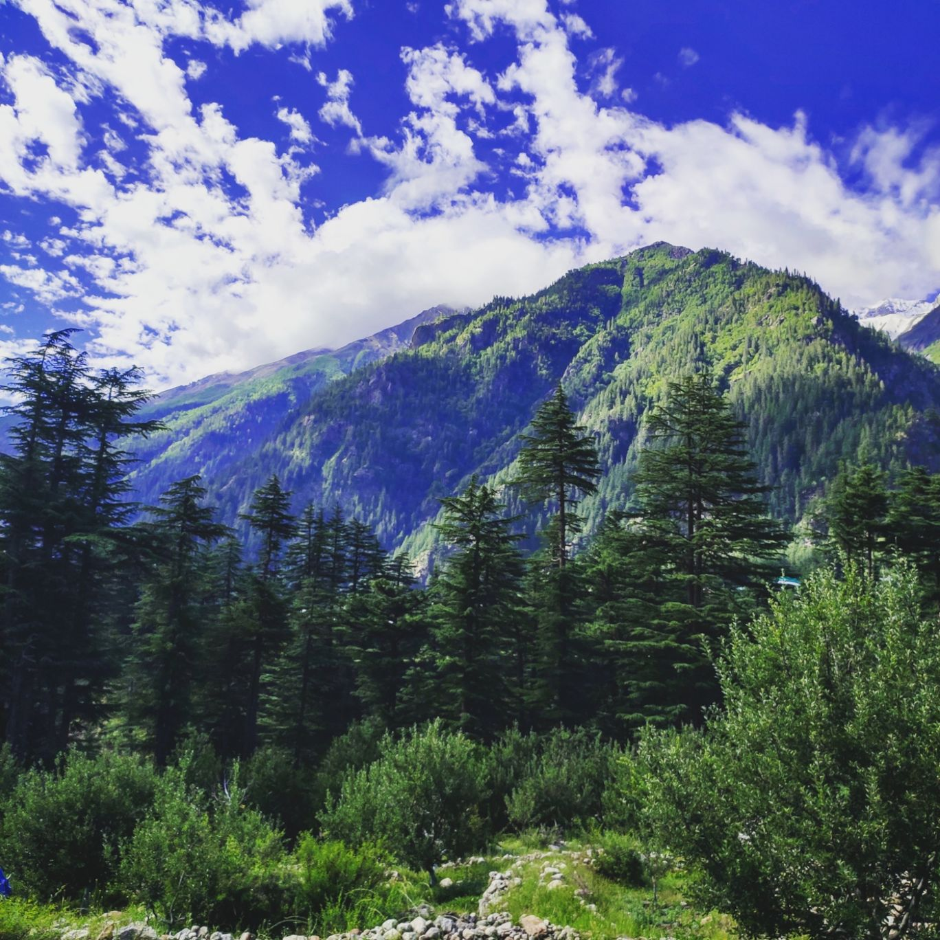 Photo of Sangla By Akshay sharma