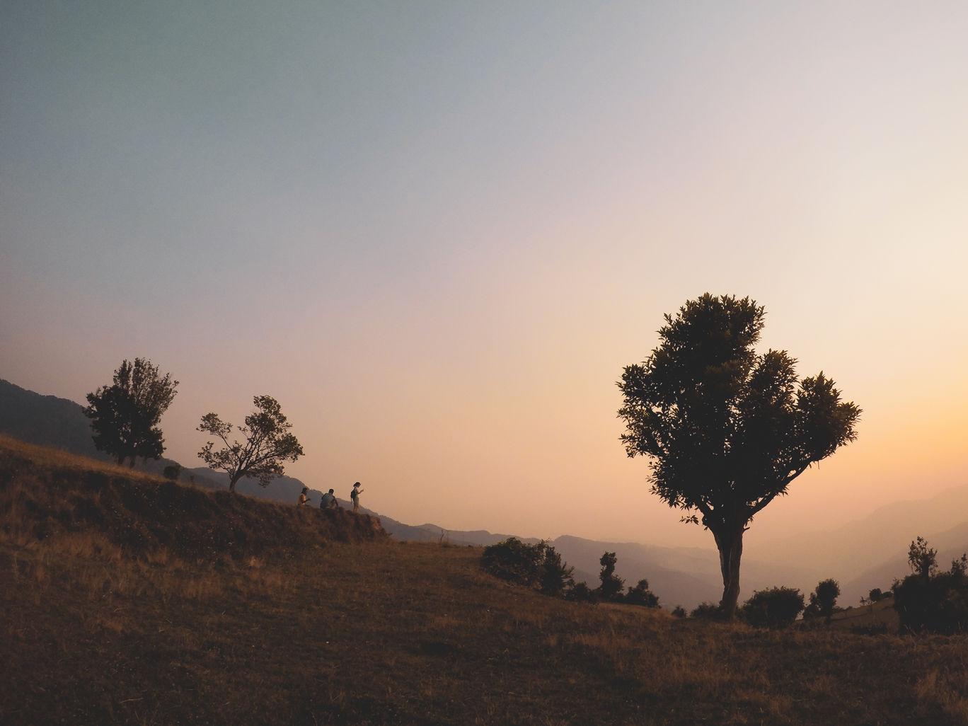 Photo of The Goat Village By Priyanka Bhor