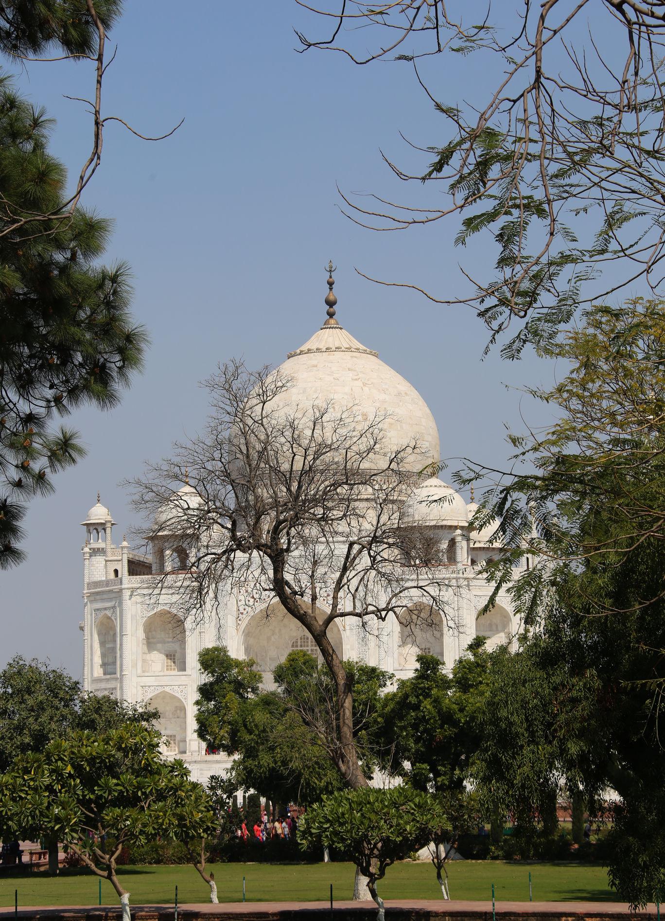 Photo of Taj Mahal By Uddhava Dasa