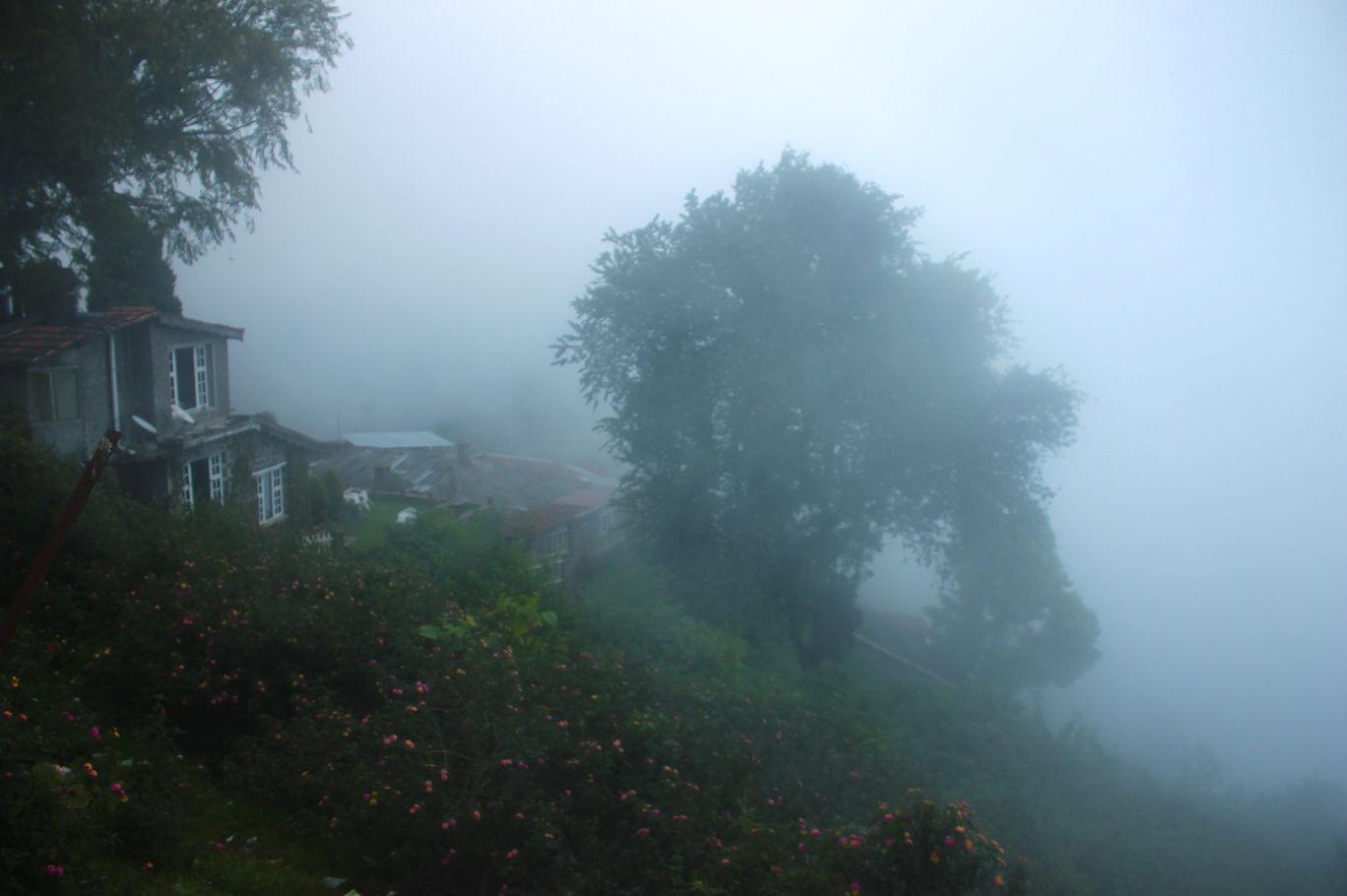 Photo of Kodaikanal By Soumya Khurana