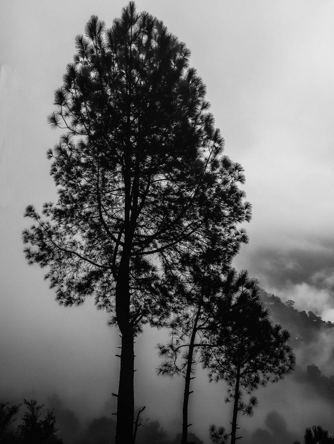 Photo of Lansdowne By Shashank Saxena