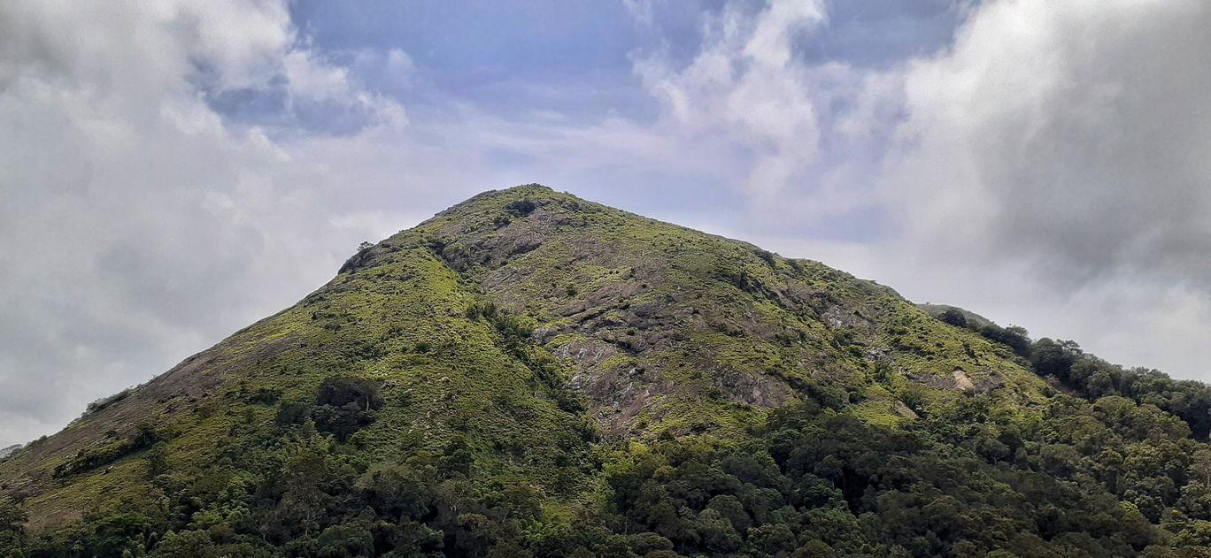 Photo of Nelliyampathy Forest Reserve By Basil Mathew