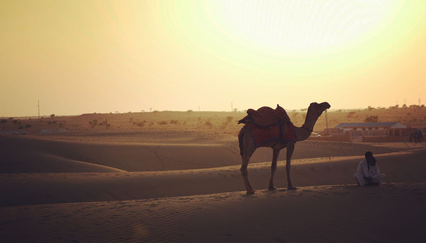 Photo of Thar Desert By Soumitra Chattopadhyay