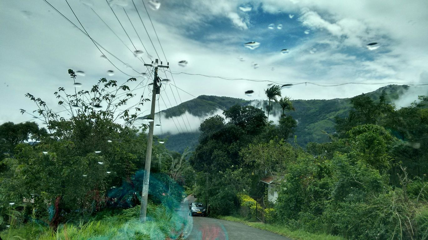 Photo of Munnar By taru -