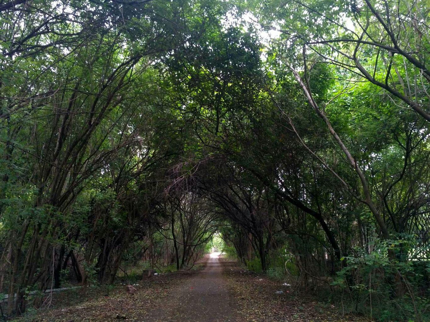 Photo of Hyderabad Central University By Hinamika Jain