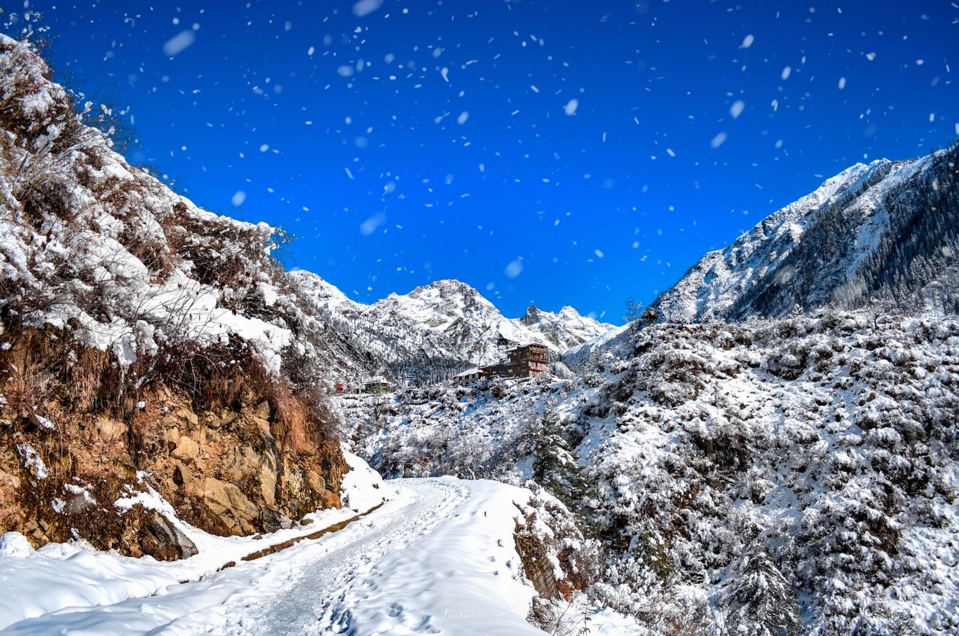Photo of Himachal Pradesh By Swetanshu Arun