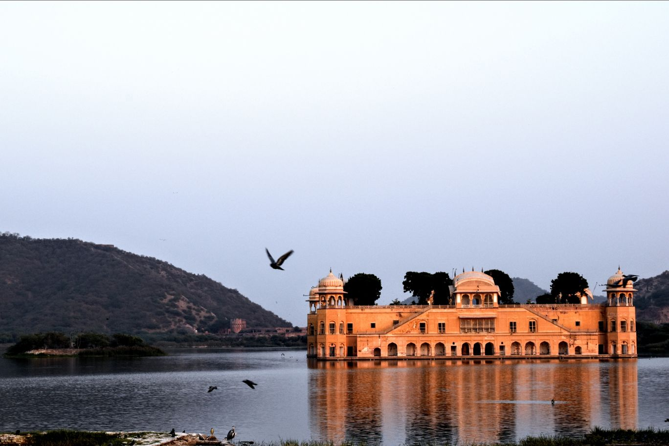 Photo of Jal Mahal By Divyesh Dave