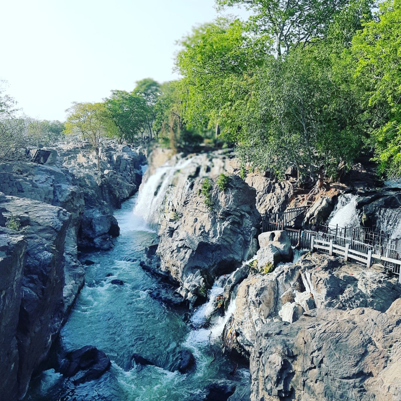 Photo of Hogenakkal Waterfalls By Mohamed Abbas