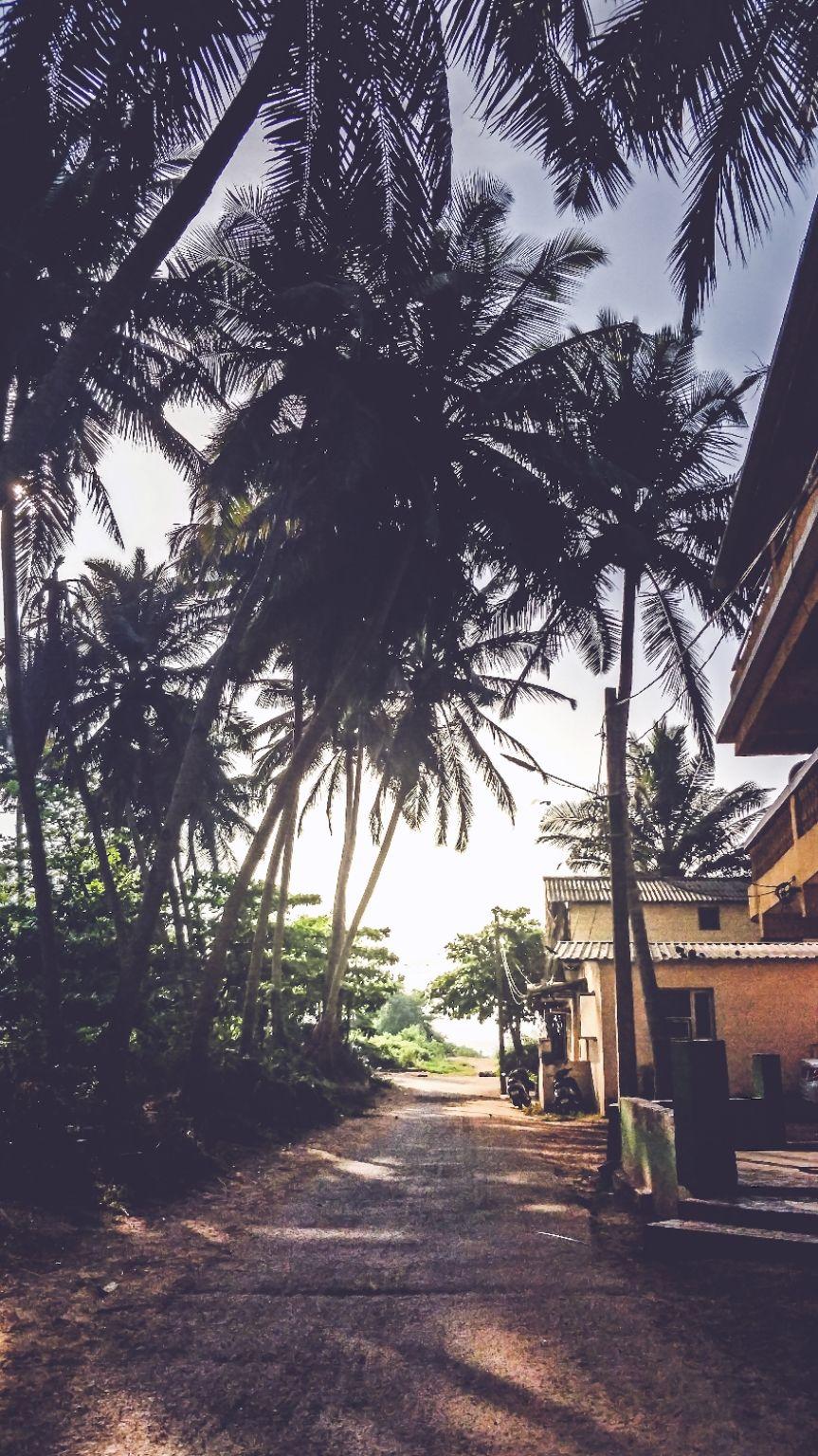Photo of Goa By Yogesh Waradkar