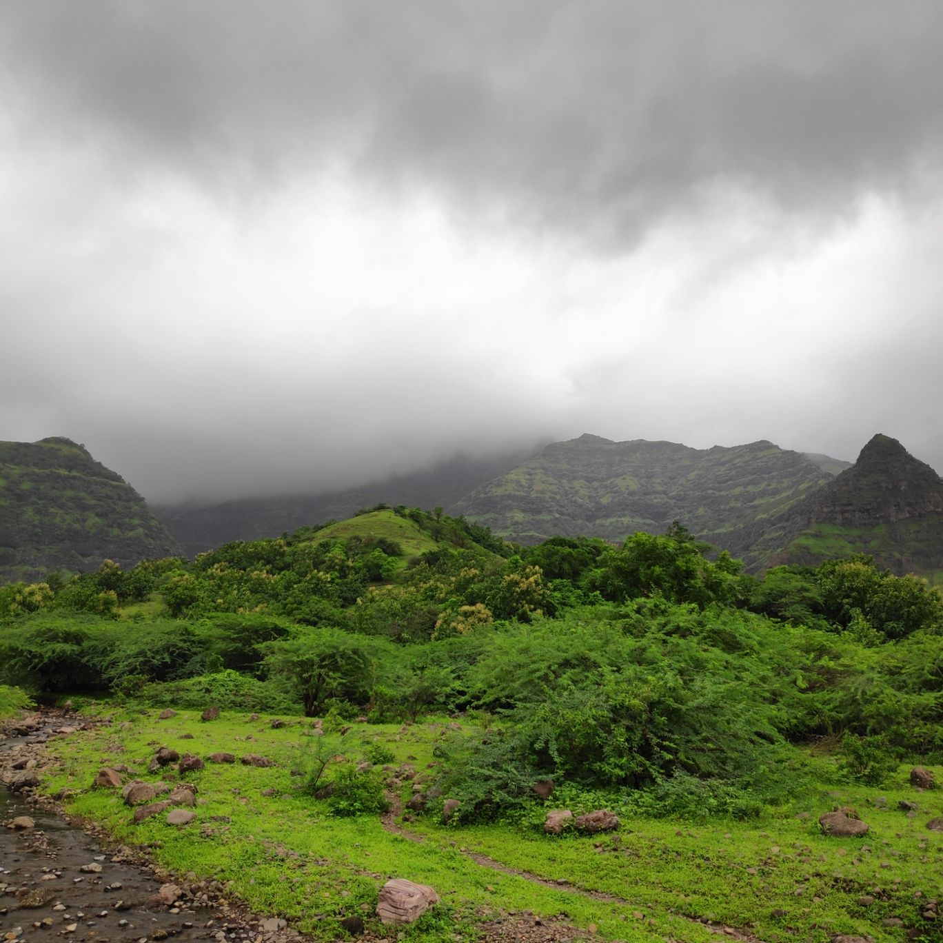 Photo of Pavagadh Hills By Gunjan Bokil