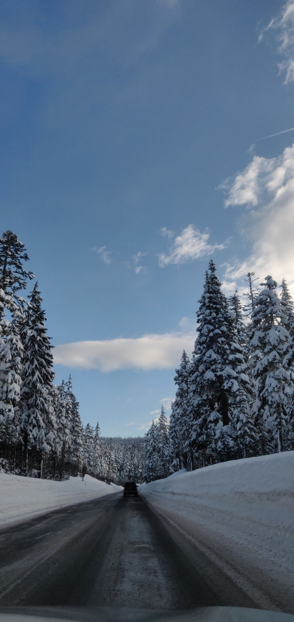 Photo of Mount Hood National Forest By Devi Archana Das