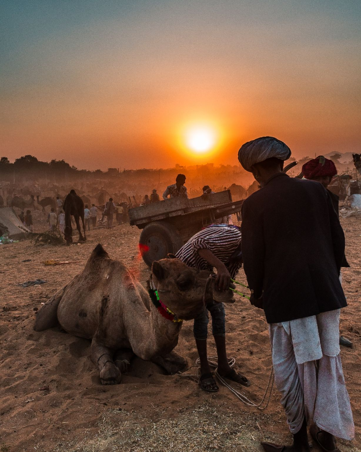 Photo of Pushkar By Raman Tyagi