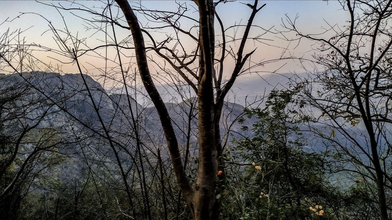 Photo of Tirumala By Sagar Sharma