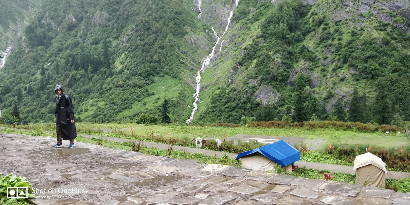 Photo of Valley of Flowers National Park By Rajani