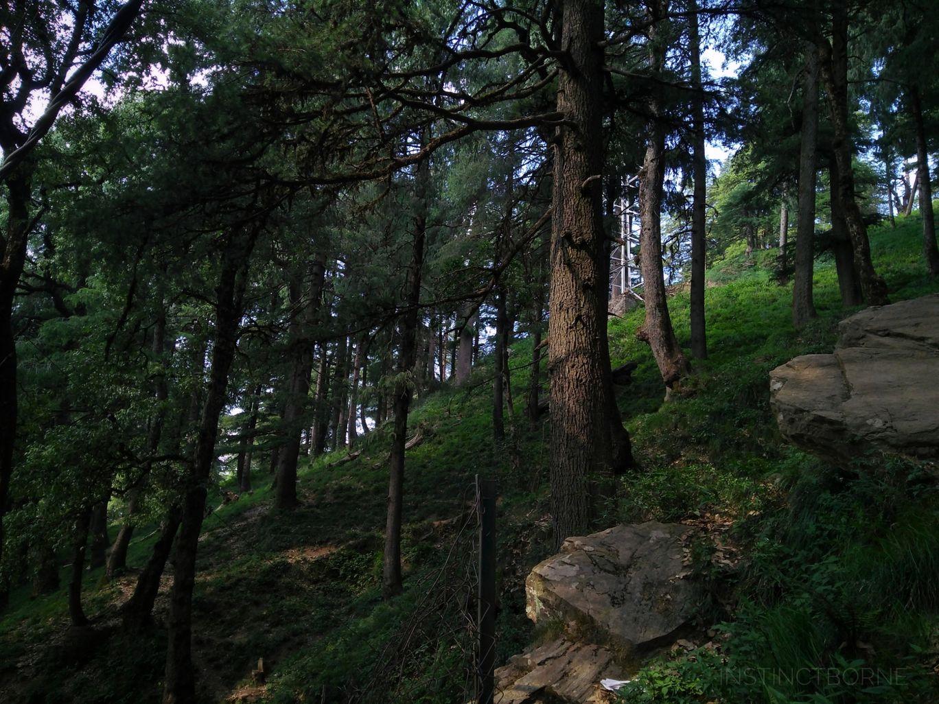 Photo of Jakhu Hill By Maitreya
