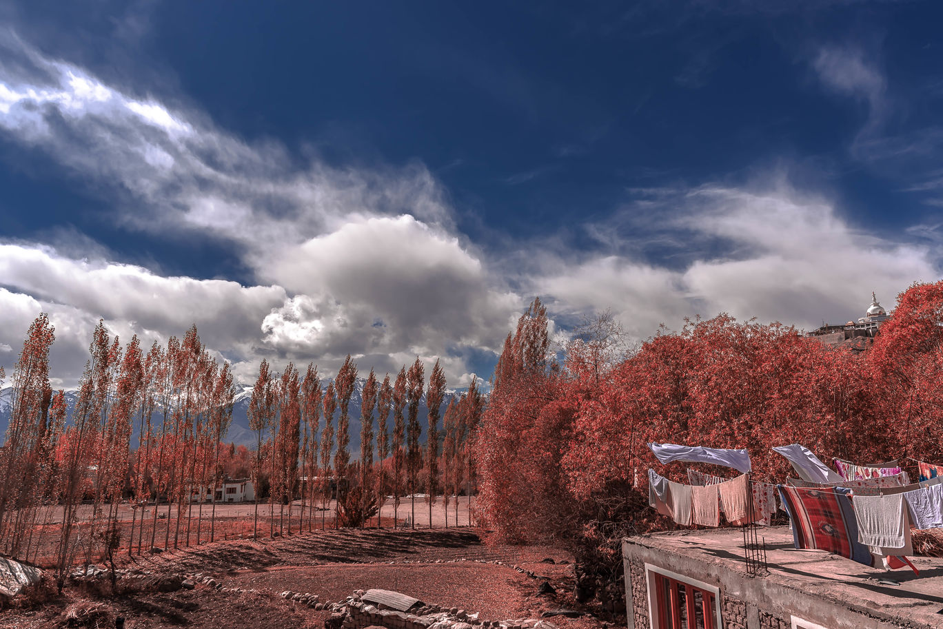 Photo of Leh By Sourav Chaudhuri