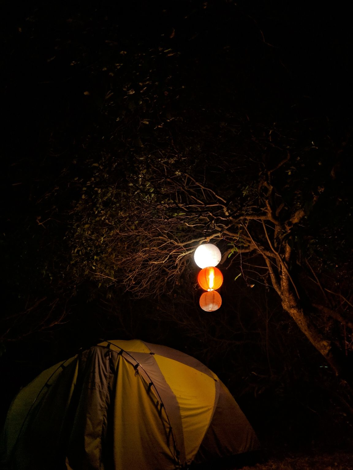 Photo of Advait Valley Camp By Ashish