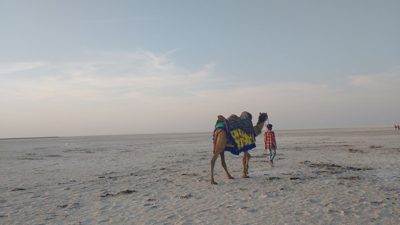 Photo of Kutch By Prerna Gupta