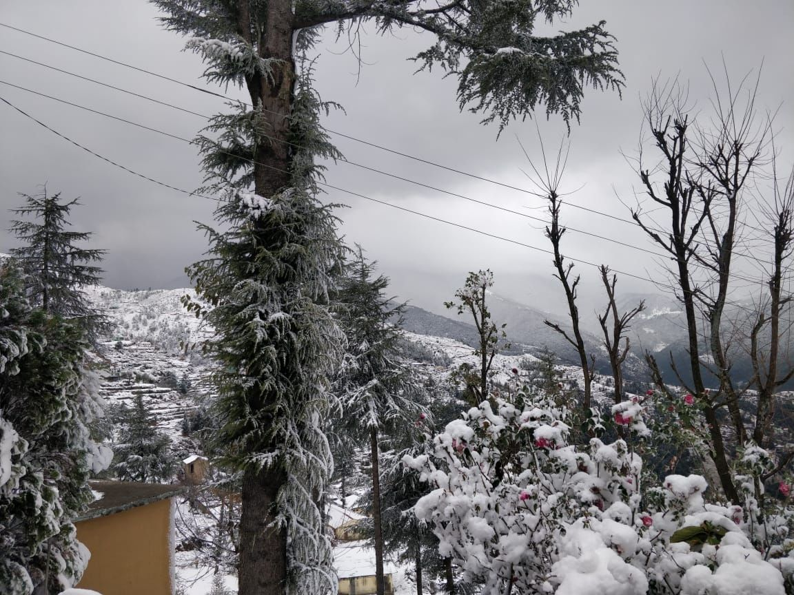 Photo of Shimla By dr aman
