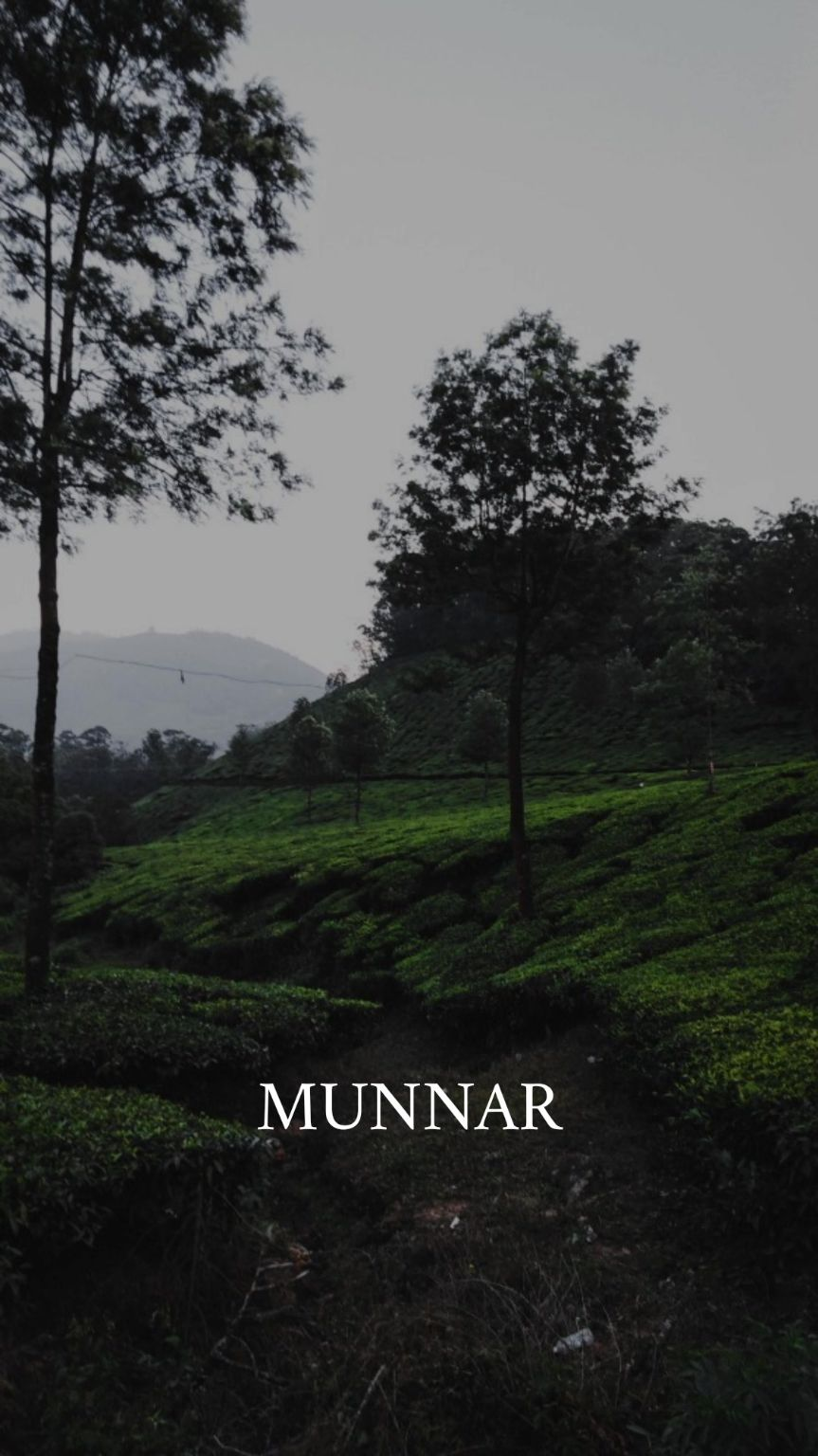 Photo of Munnar By Tushar Varma
