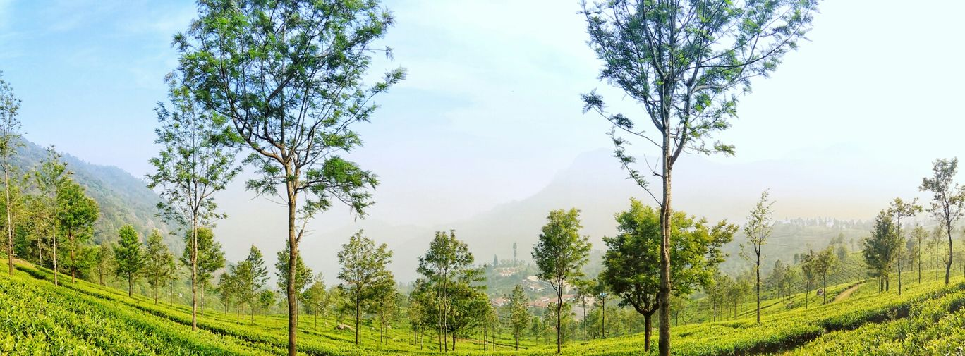 Photo of Ooty By Abhinav Muley