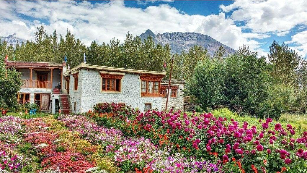 Photo of Nubra Valley By blendedjourney