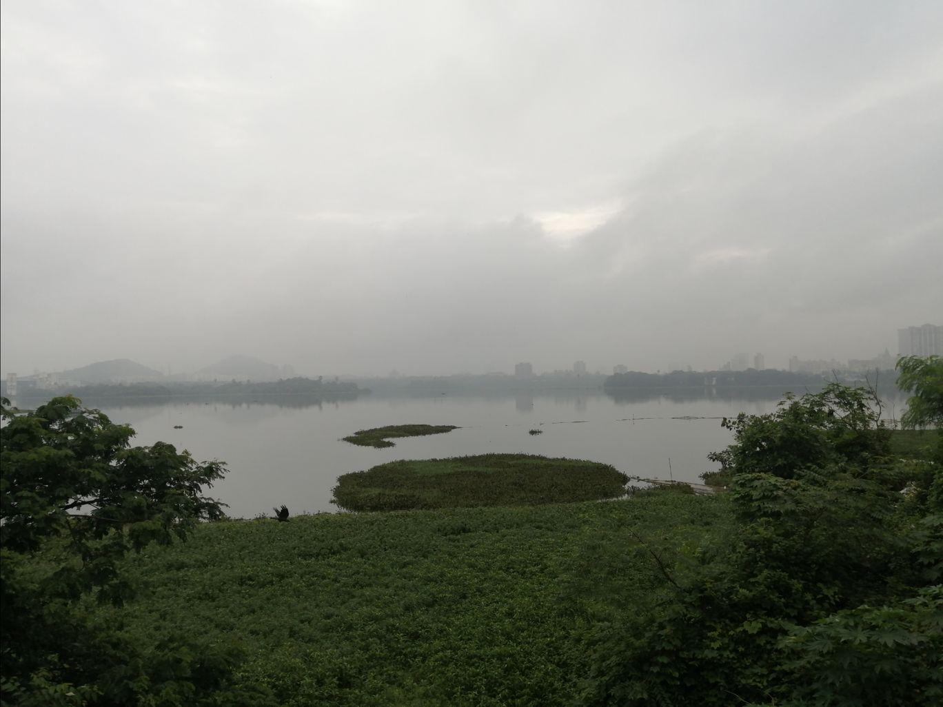 Photo of Powai Lake By Archana Vijayan