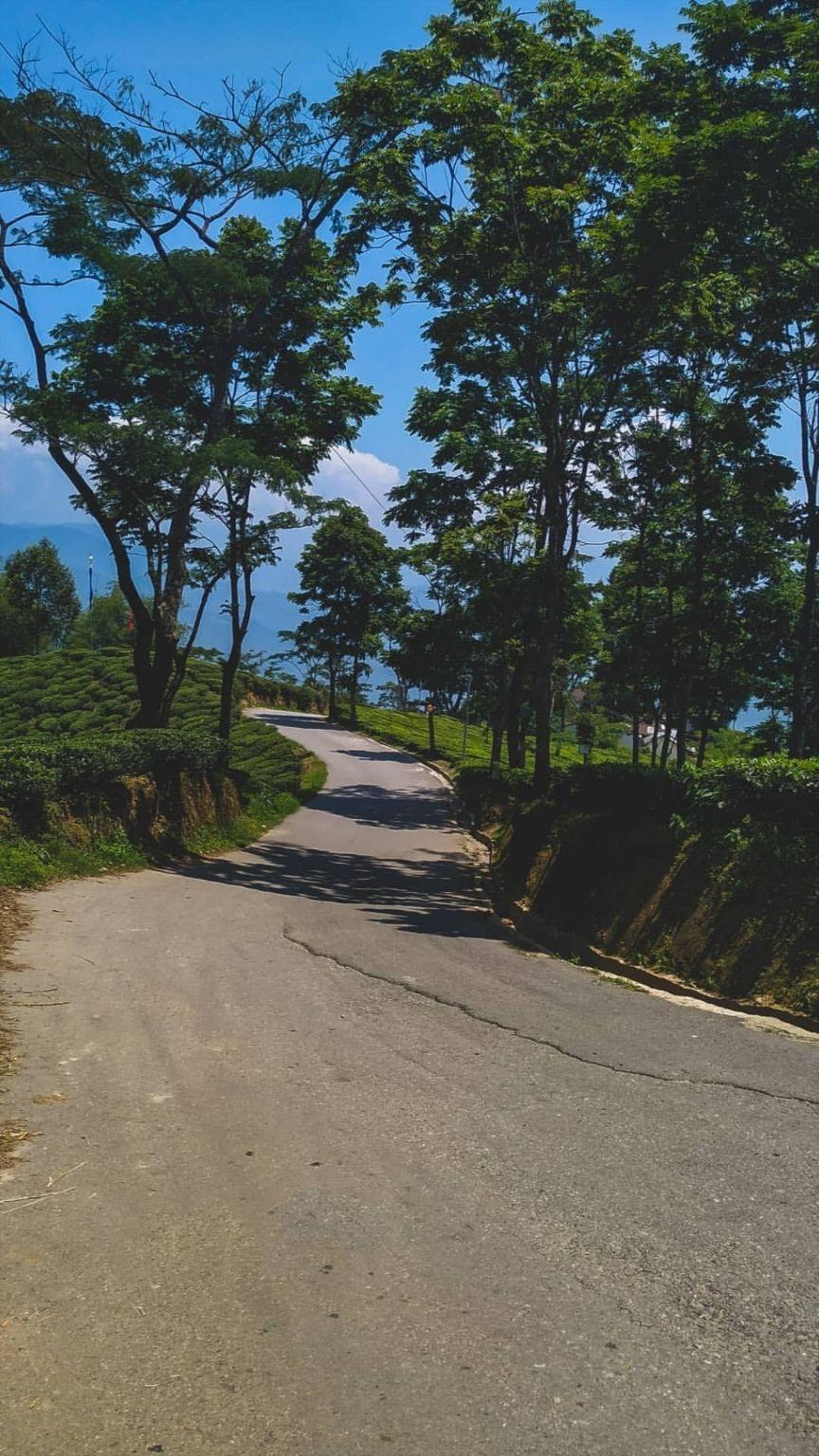 Photo of Darjeeling By Priya Chowdhary