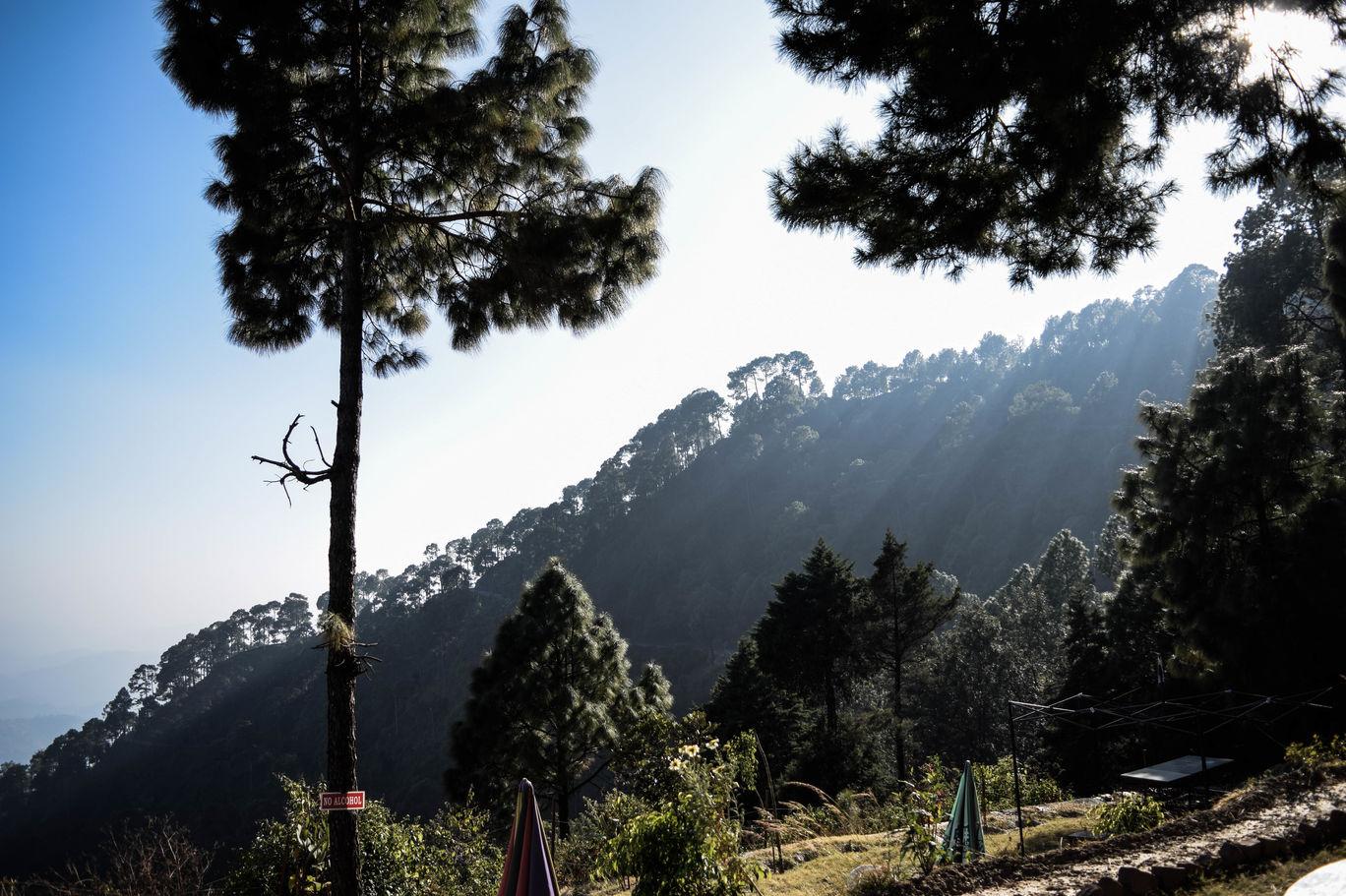 Photo of Lansdowne By Shatakshi Gupta