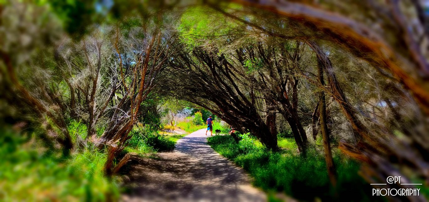 Photo of Port Stephens By Priyanka Telang