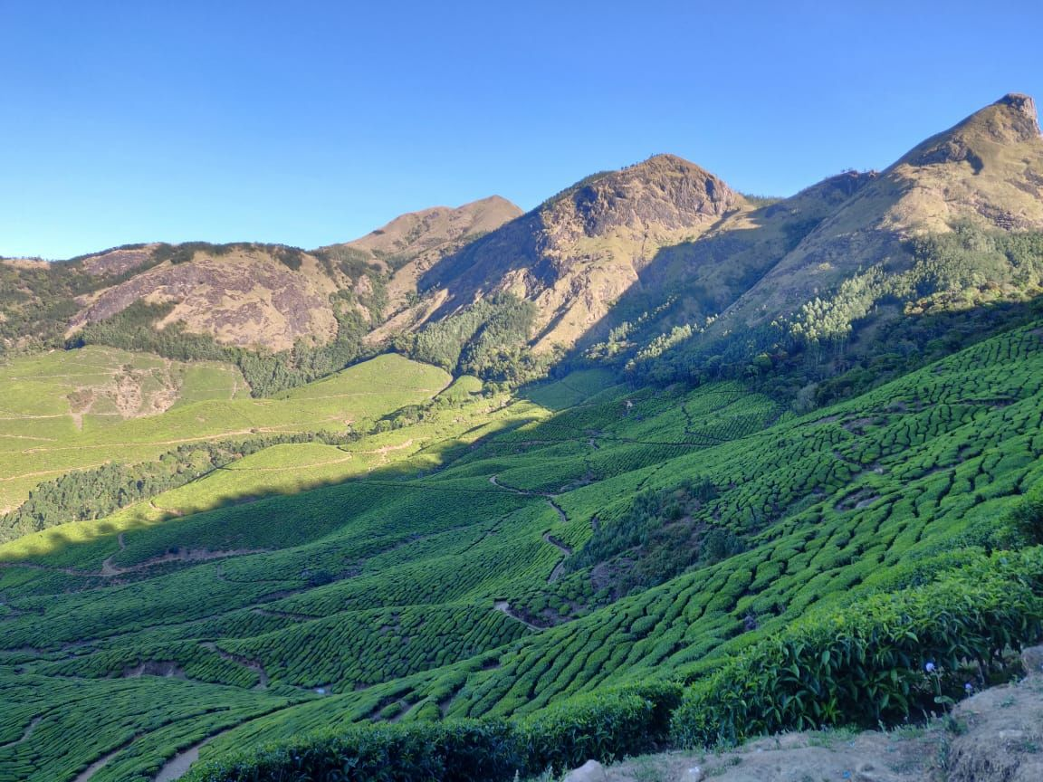 Photo of Munnar By Brajendra Raghuvanshi