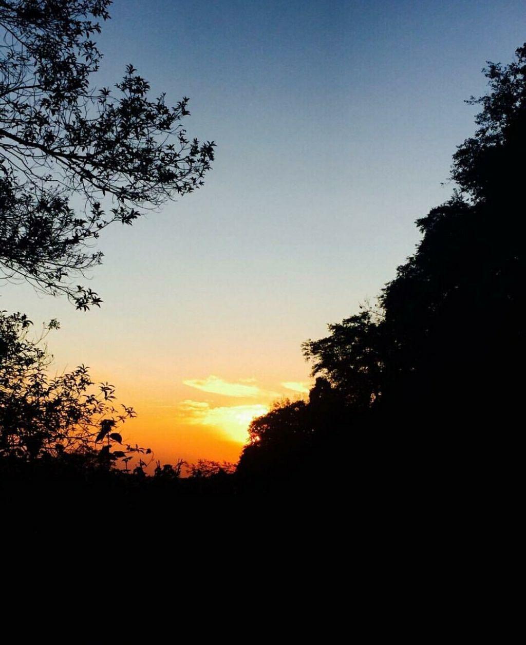 Photo of Tiger Hill Sunrise Observatory By Shireena Jose