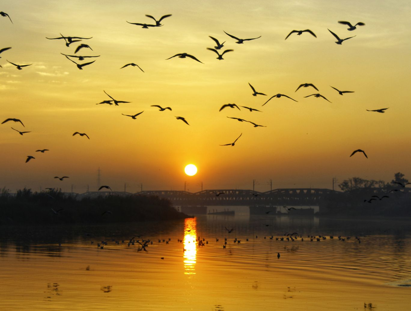 Photo of Yamuna Ghat By Ankit Singhal