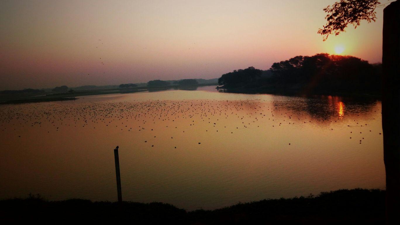 Photo of Thol Bird Sanctuary View Point By Puravi Pradhan