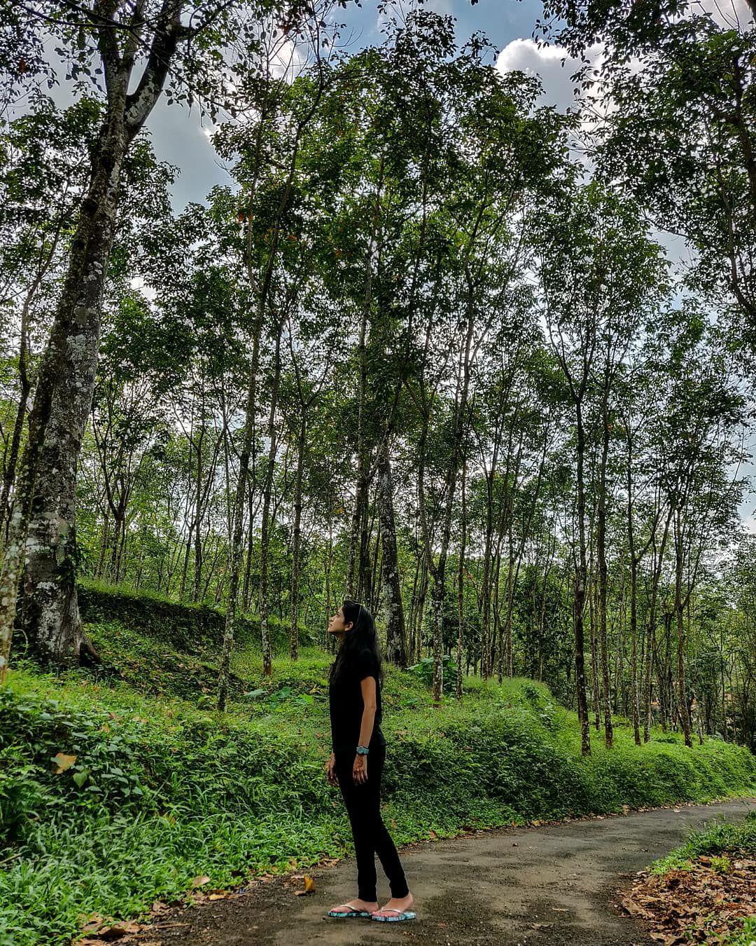 Photo of Kerala By Lavina
