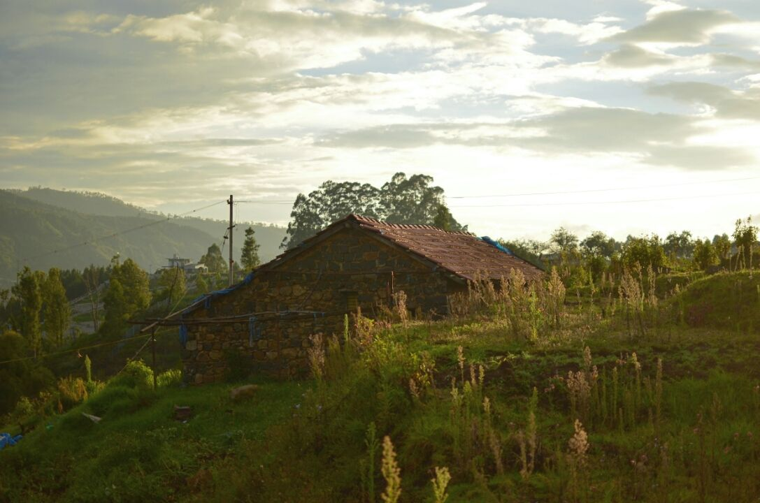 Photo of Princess of hills- Kodaikkanal By ArJun RaJu