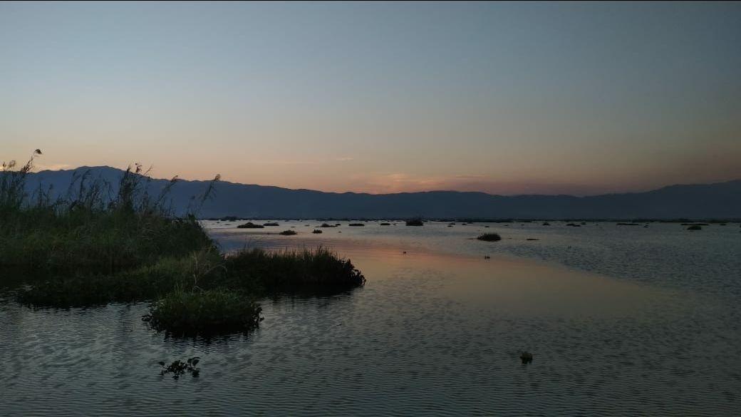 Photo of Loktak Lake By shyam singh