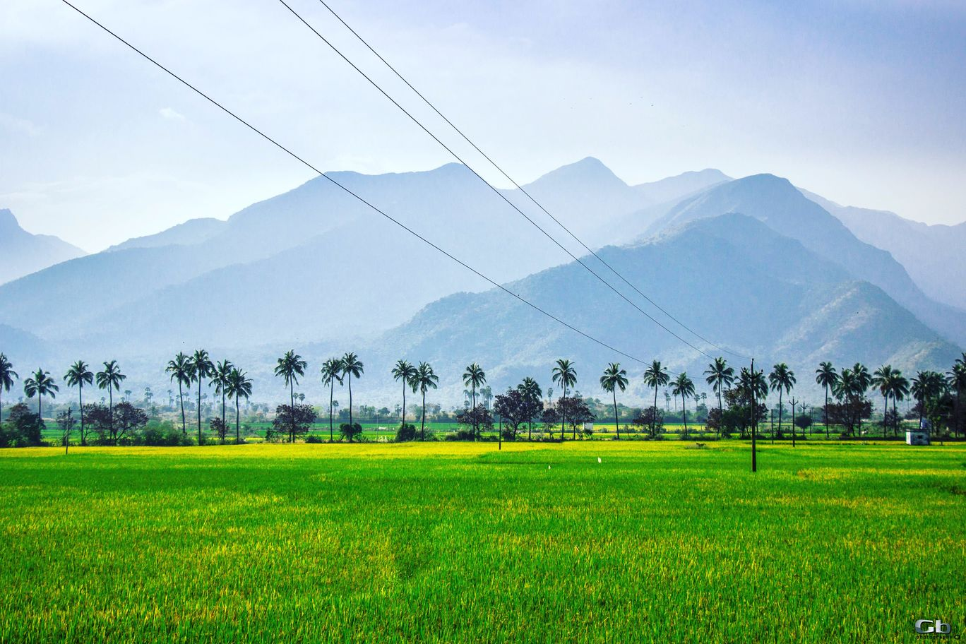 Photo of Tamil Nadu By The Musafirzz