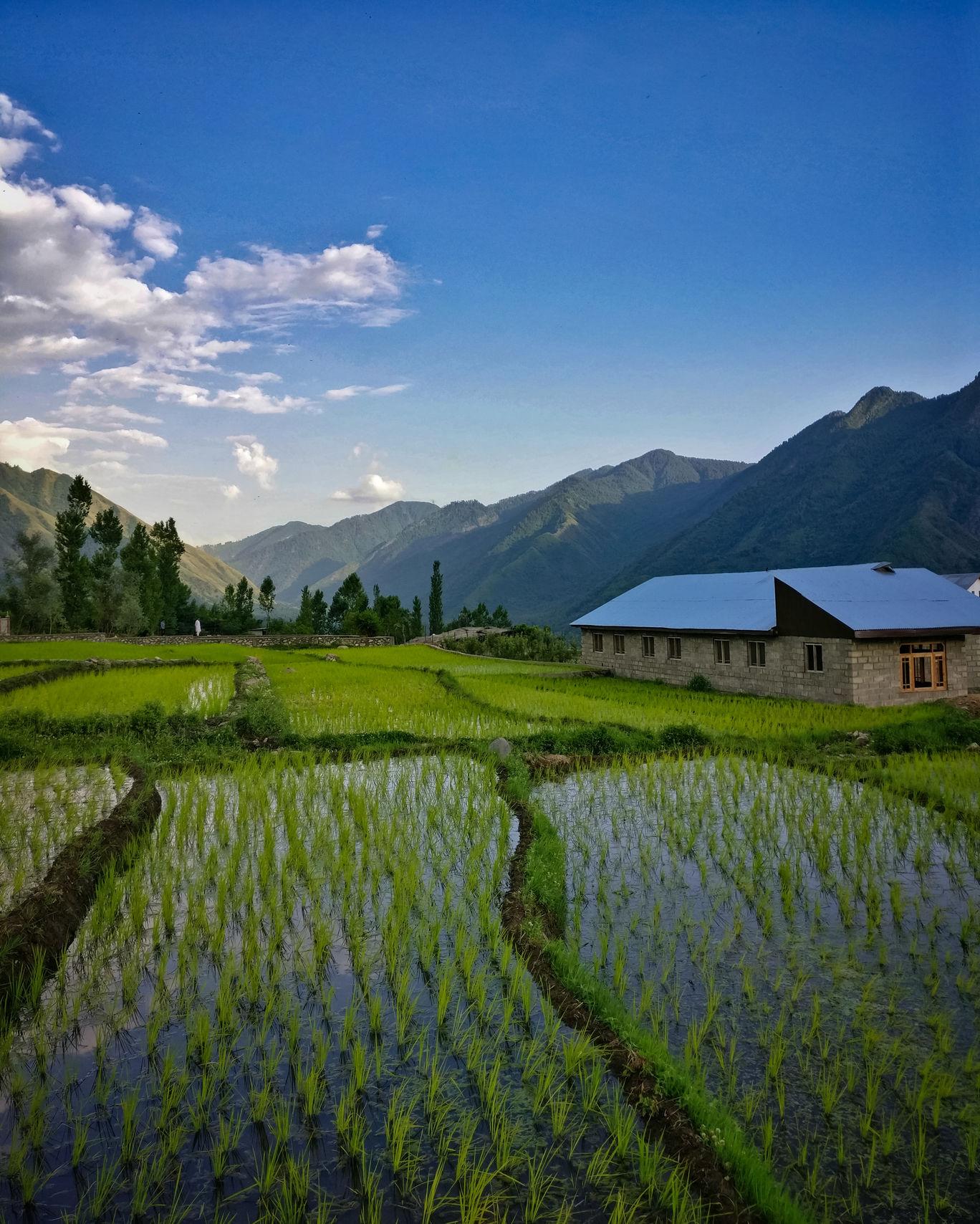 Photo of Srinagar By Sabeel Dhar