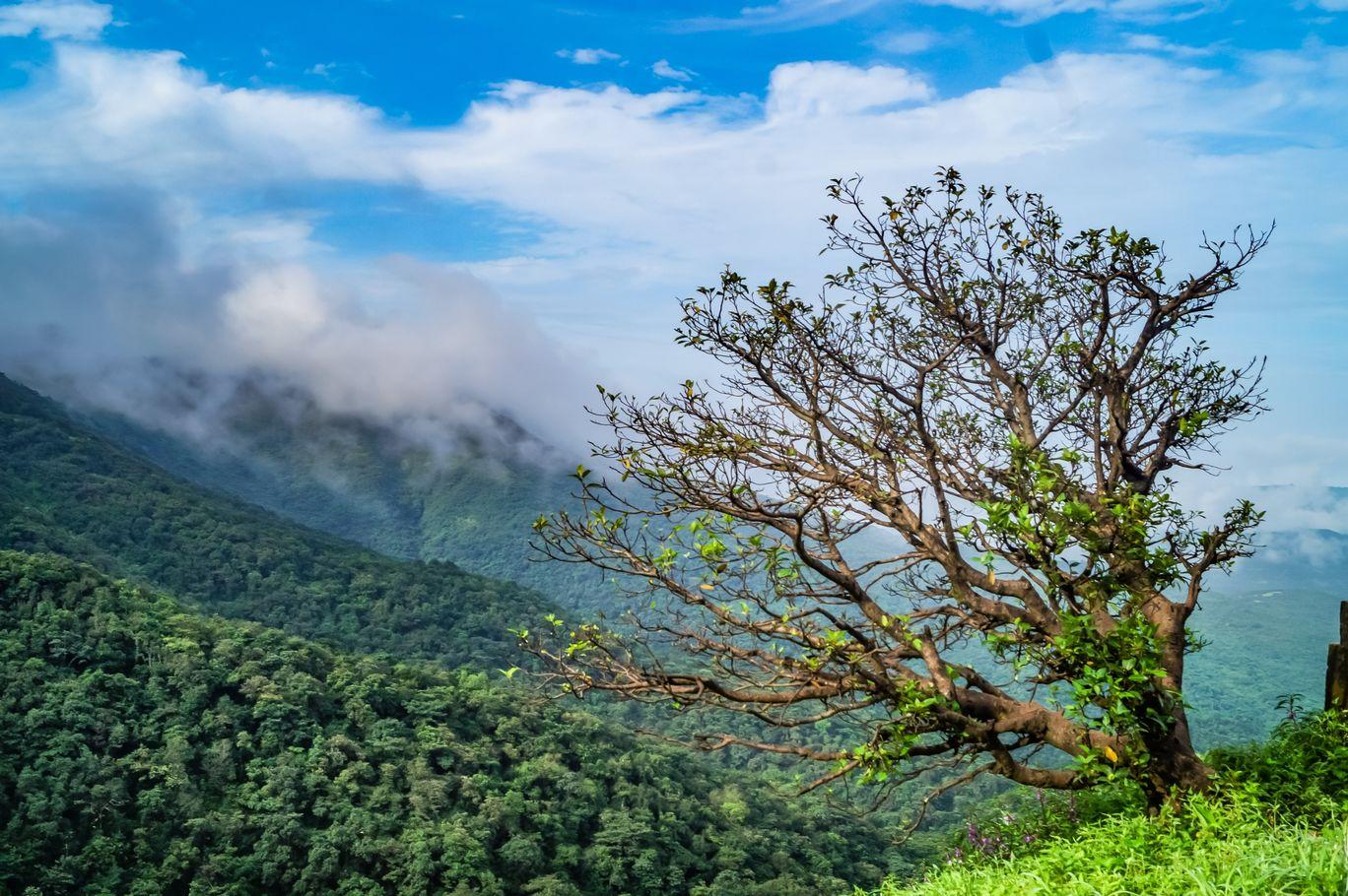 Photo of Amba Ghat By Swapnil Suvarna