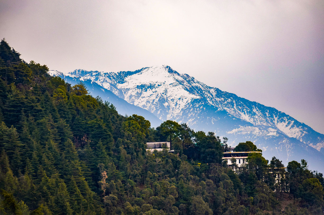 Photo of Dharamshala By Sachin Dogra