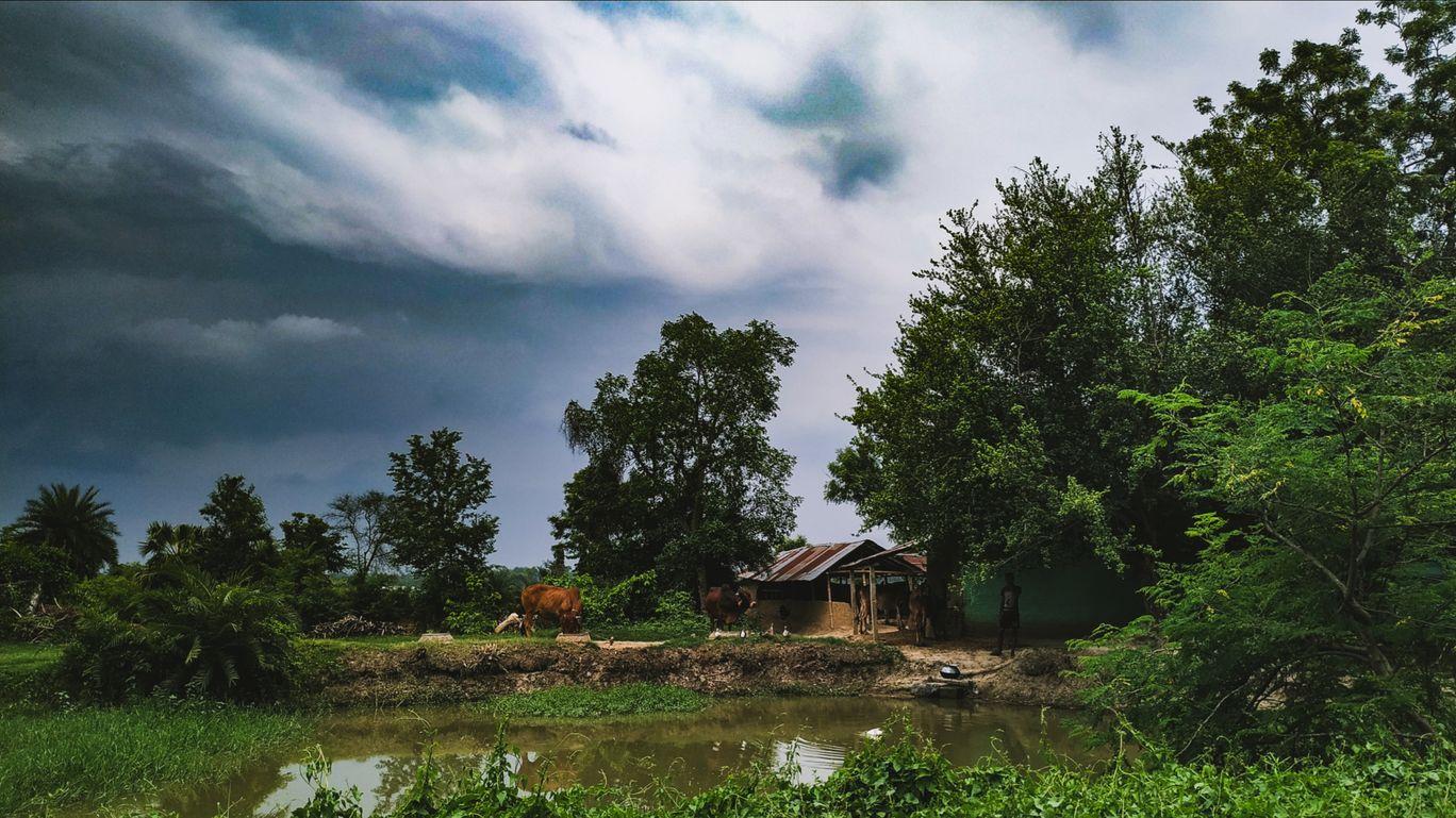 Photo of Bolpur - Santiniketan Road By sirshajit dutta