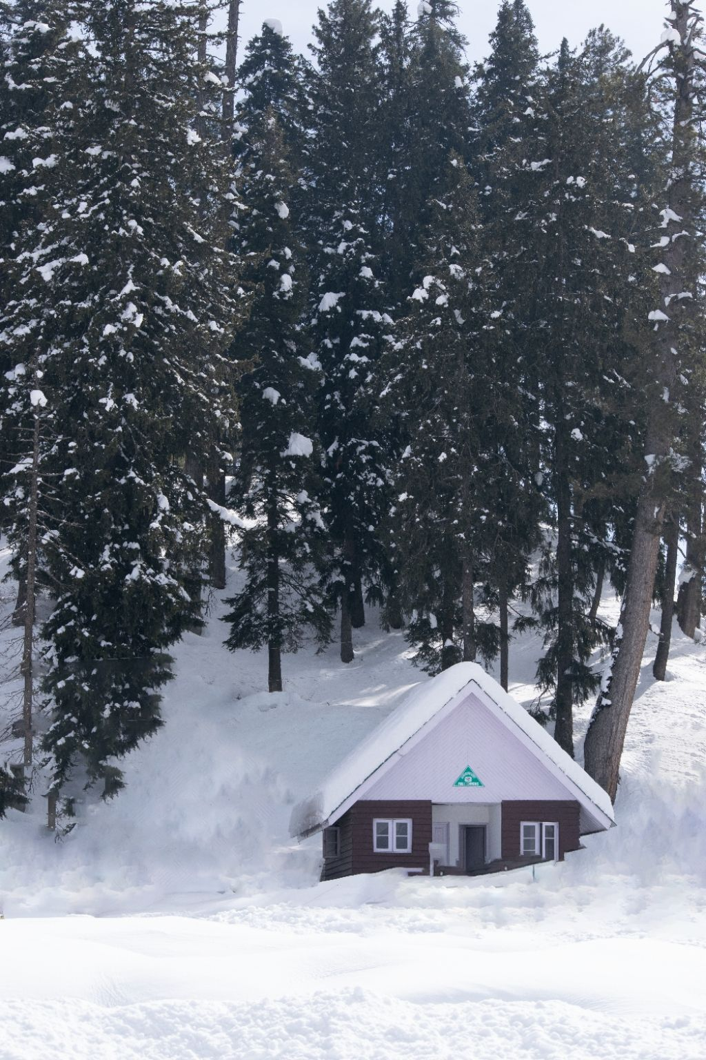 Photo of Gulmarg Gondola By Suhail Sofi