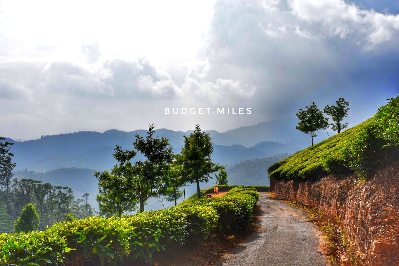 Photo of Munnar By Budget.Miles