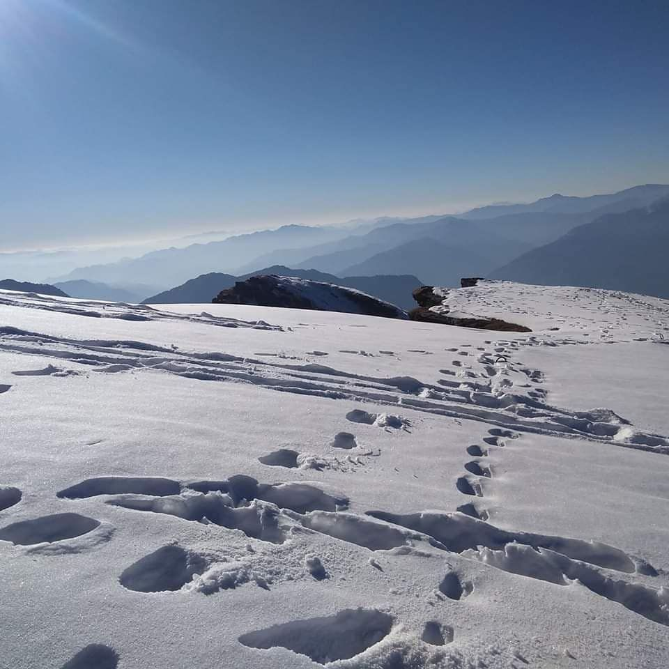 Photo of Chopta Tungnath Chandrashila Trekking By Shashank Singh
