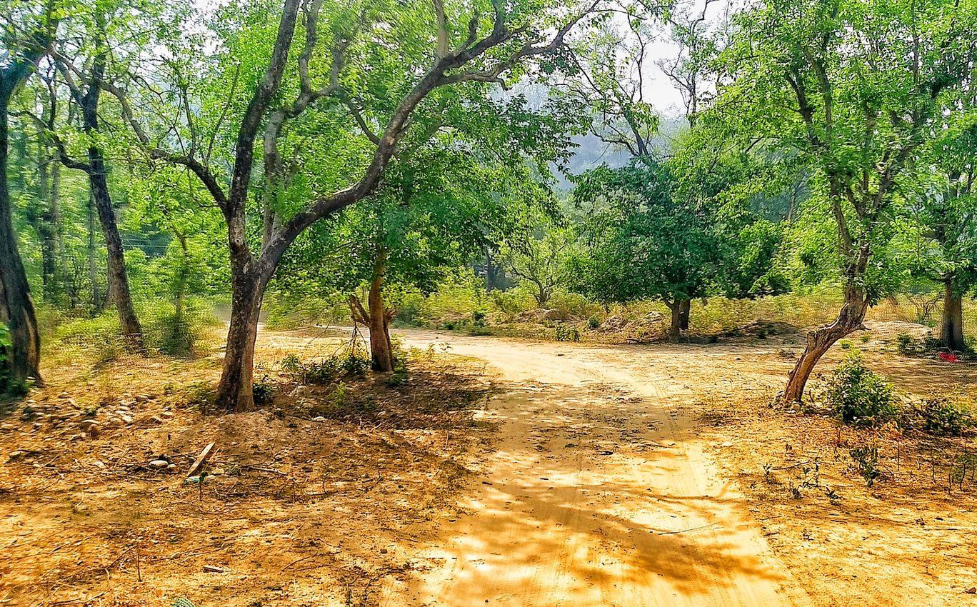 Photo of Ramganga River By Antriksh Sharma