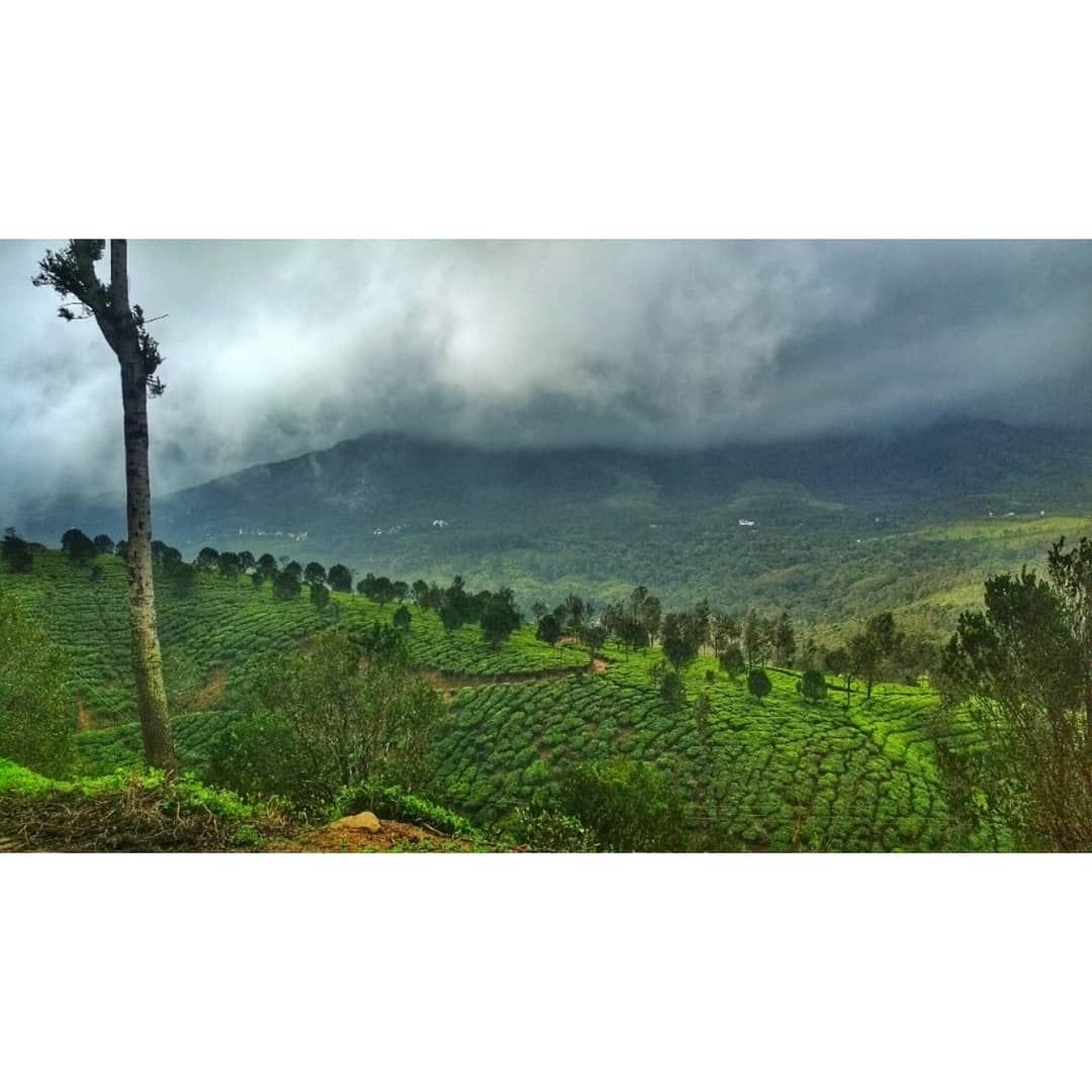 Photo of Kerala By ragini choudhari