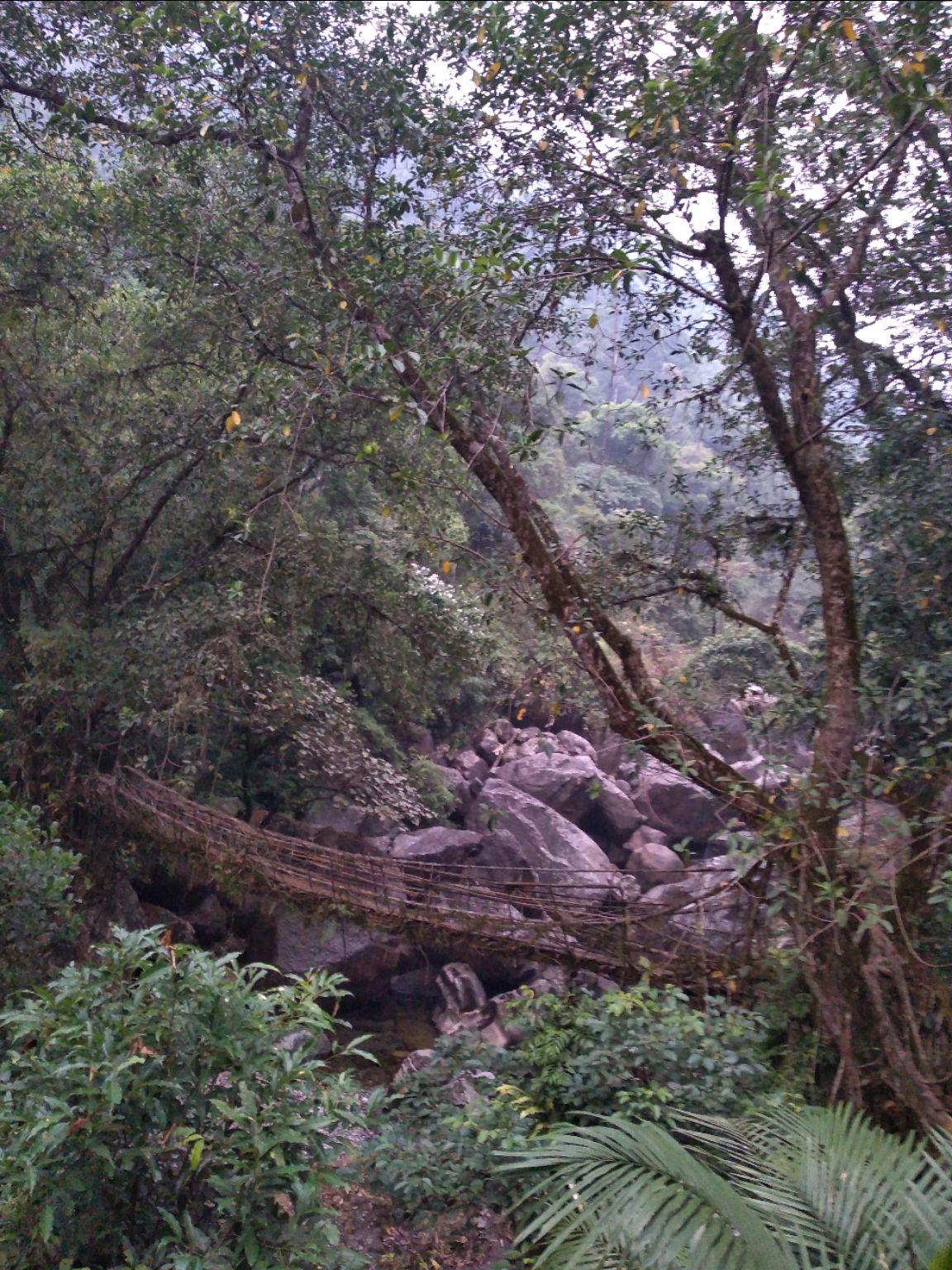Photo of Meghalaya By Anisha